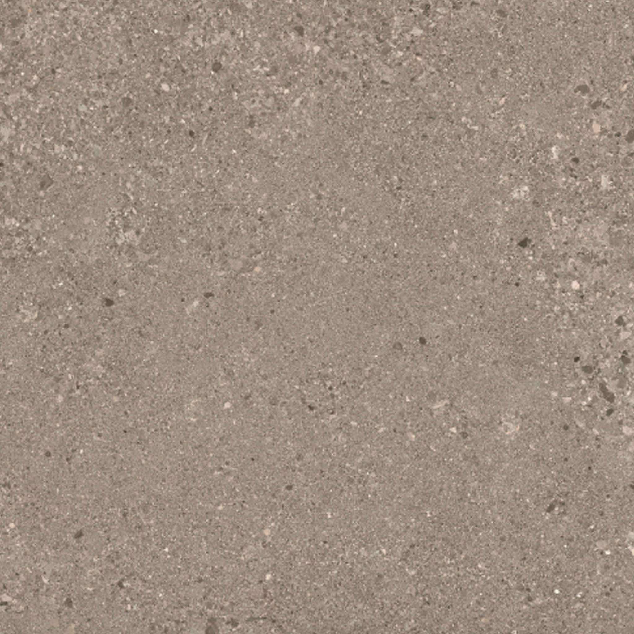 Grain Stone by Ergon Rough Grain Taupe