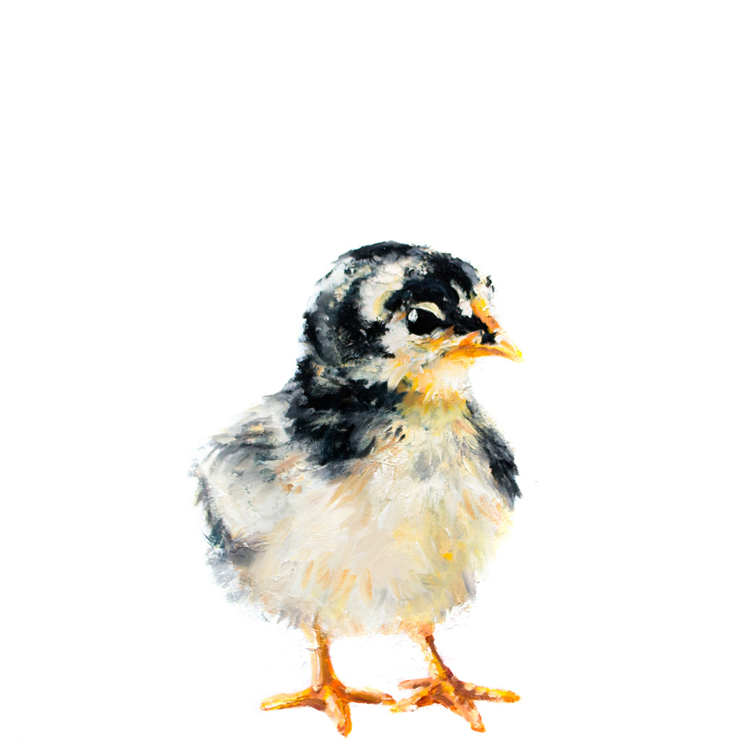 CHESTER THE CHICK
