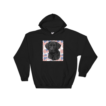 Unisex Independence Day Pet Print Hoodie (Black)