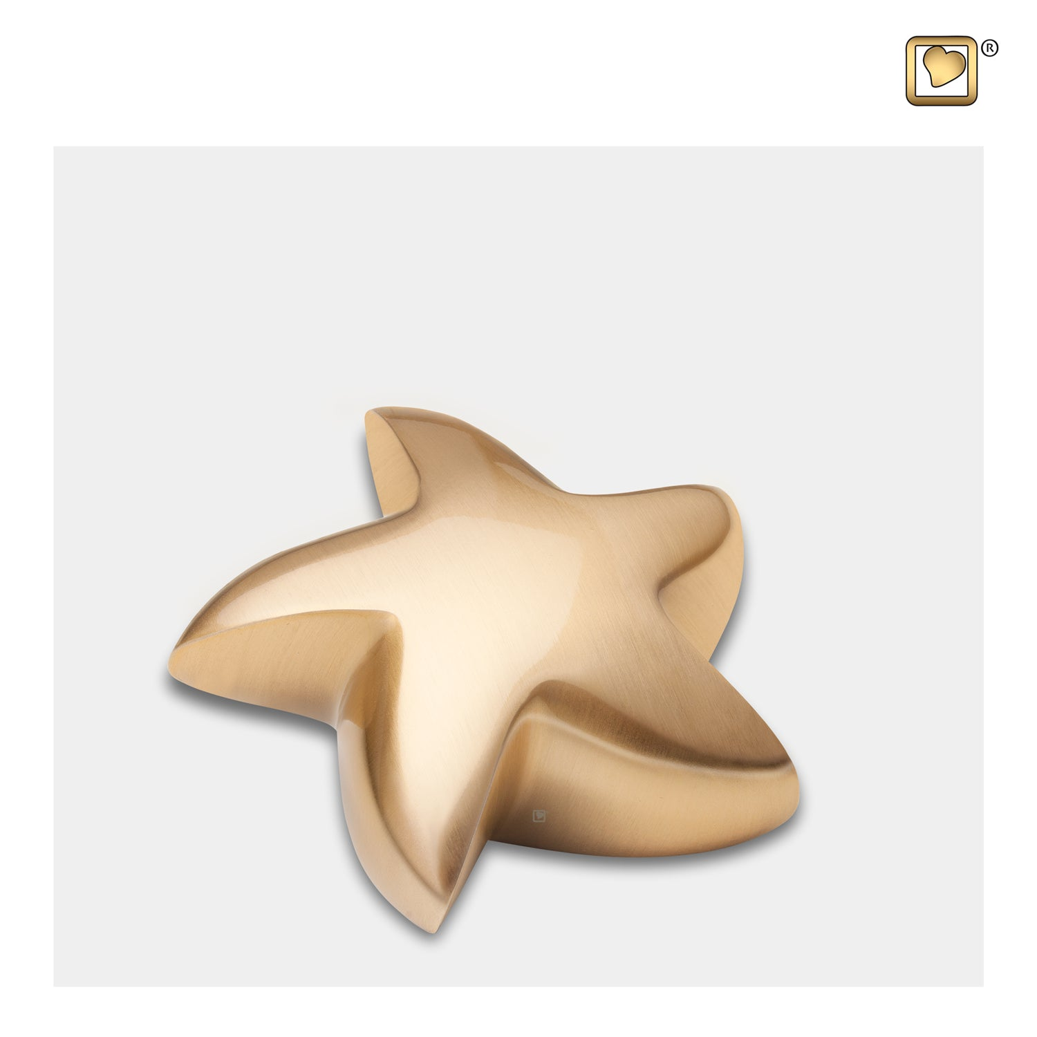 Star Brushed Gold Cremation Urn