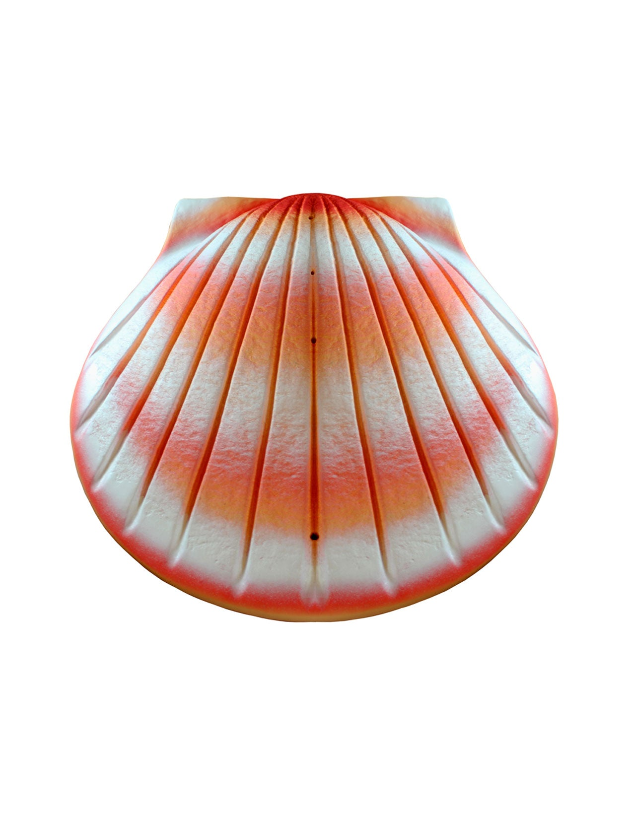 The Shell Urn Coral Cremation Urn