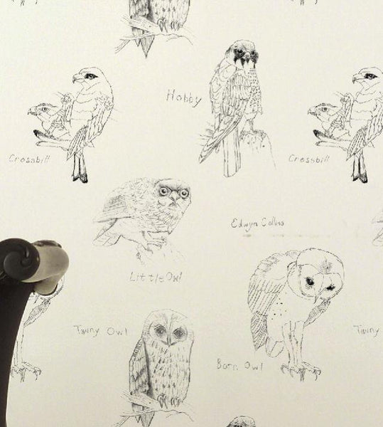 Edwin Collins Owls Wallpaper Wallcovering