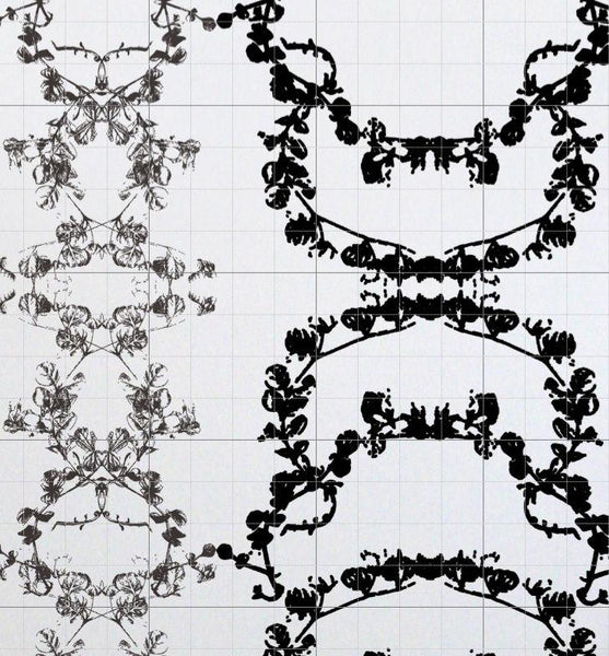Baroquette - Black White Wallpaper Wallcovering