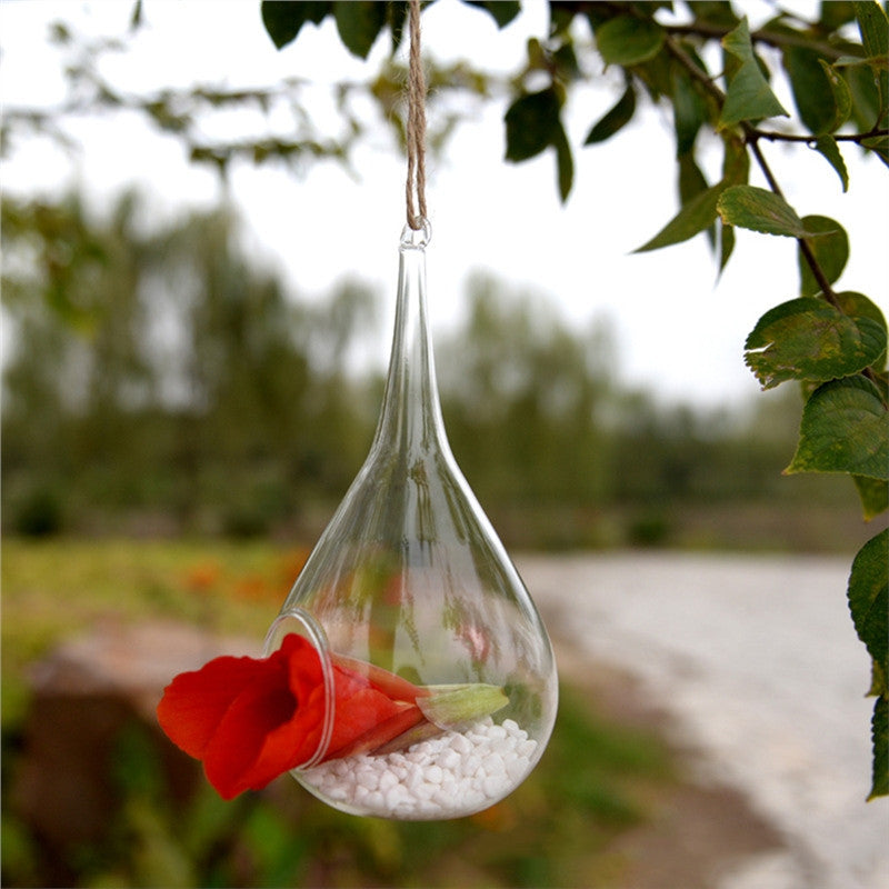 Transparent Hanging Glass Planter