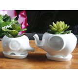 Elephant Ceramic Planter Pot