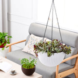 Wire Hanging Plant Basket