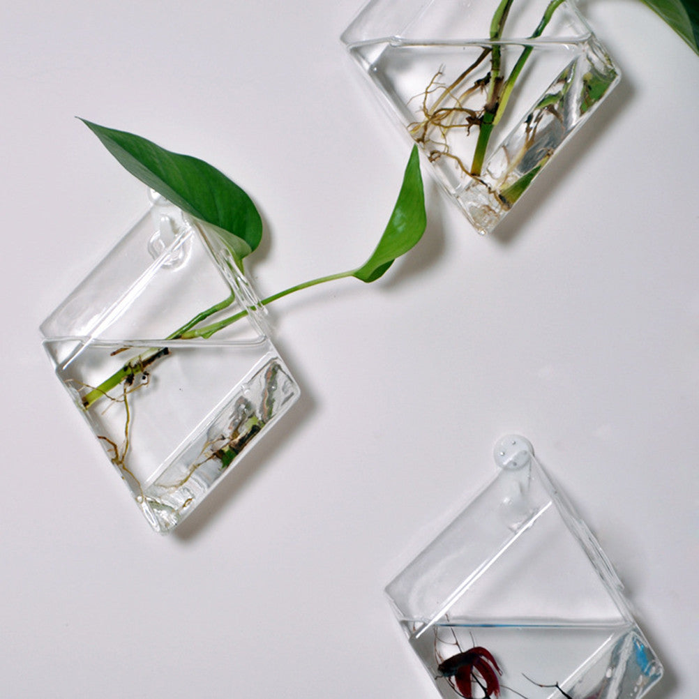 Wall Hanging Glass Planter