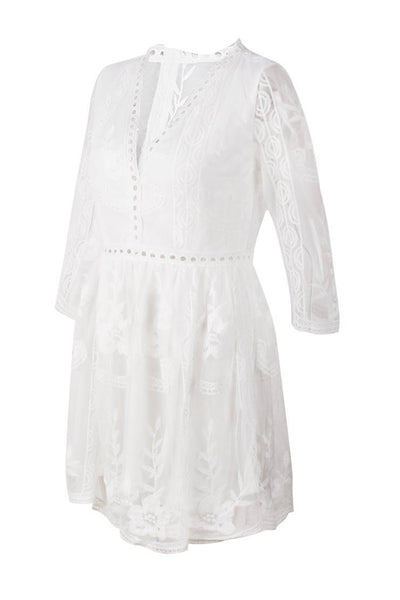 Chic Embroidery See-Through Lace Dress-[variant_title]-looksinn