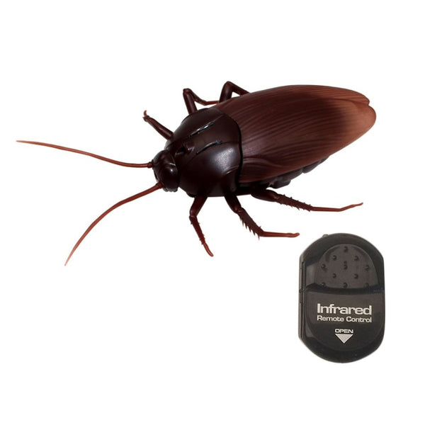 "Remote-Controlled Cucaracha ""Cockroach"""