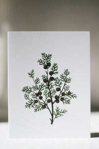 Scented Card, Hinoki