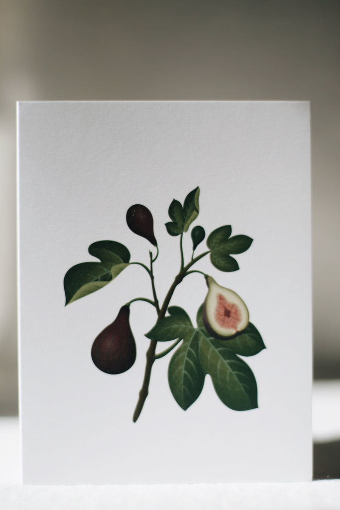 Scented Card, Fig