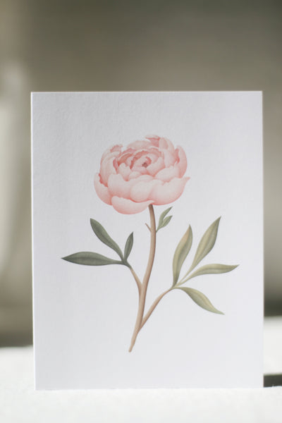 Scented Card, Peony