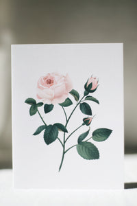 Scented Card, Rose