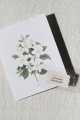 Scented Card, Orange Blossom