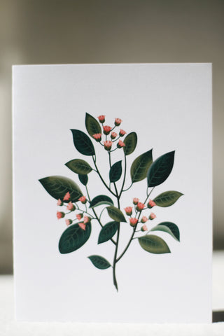 Scented Card, Sandalwood