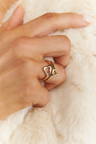 Double Standard Geometric Ring