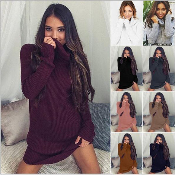 Women Knitted Turtleneck Long Sleeve Dress Sweaters Pullovers Plus Size