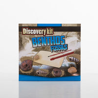 Archaeology Game for Children
