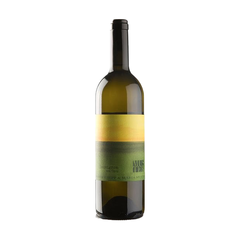 Opok Sauvignon, Weingut Sepp Muster 2017 - SipWines Shop
