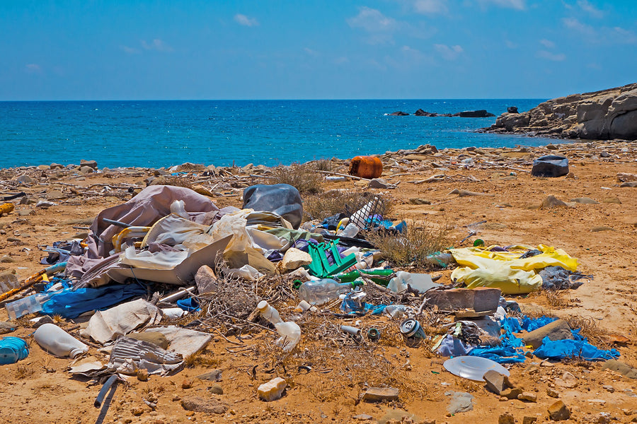 Single-use plastic banned in the EU by 2021