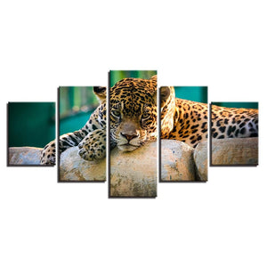 Resting Leopard-5 Panel-Canvas Bros