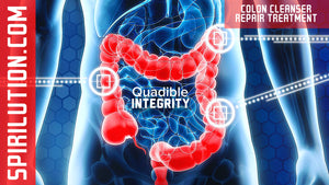 ★COLON CLEANSER REPAIR AND ENERGIZING FREQUENCY FORMULA★ QUADIBLE INTEGRITY - SPIRILUTION.COM