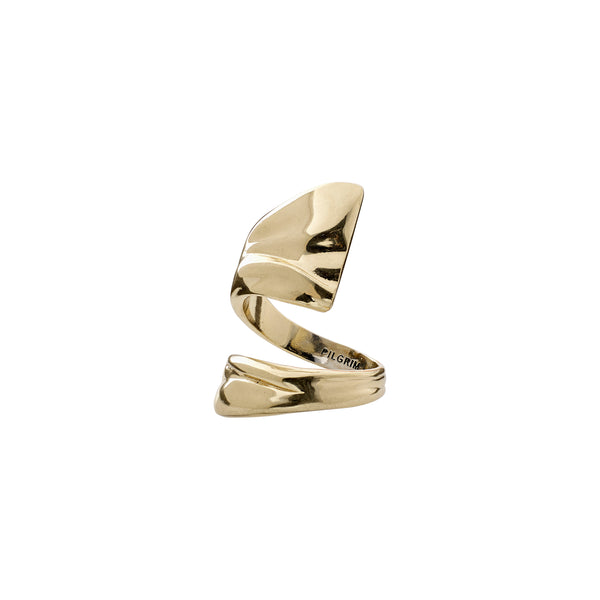 Gold Water Ring