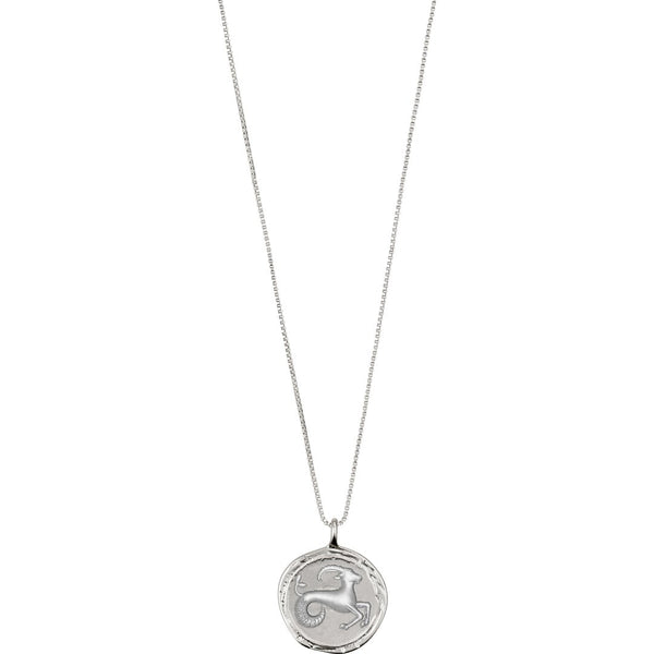 Star Sign Necklace: Capricorn