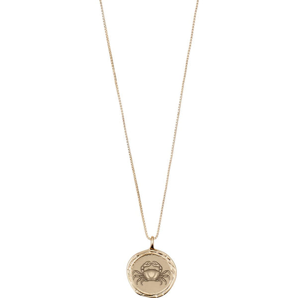 Star Sign Necklace: Cancer