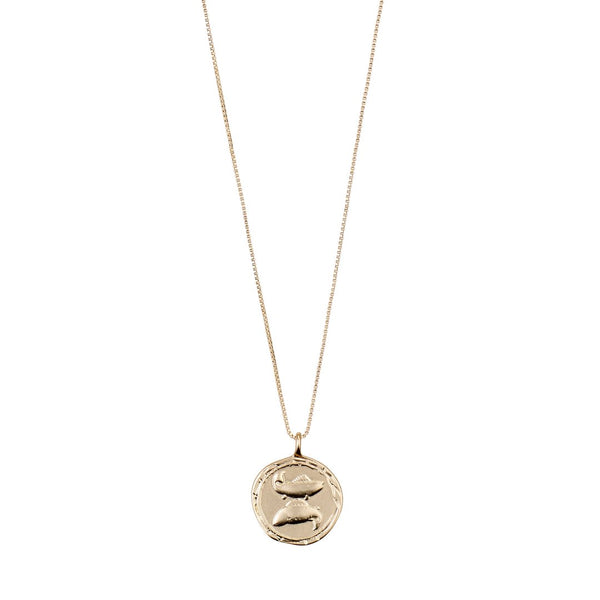 Star Sign Necklace: Pisces