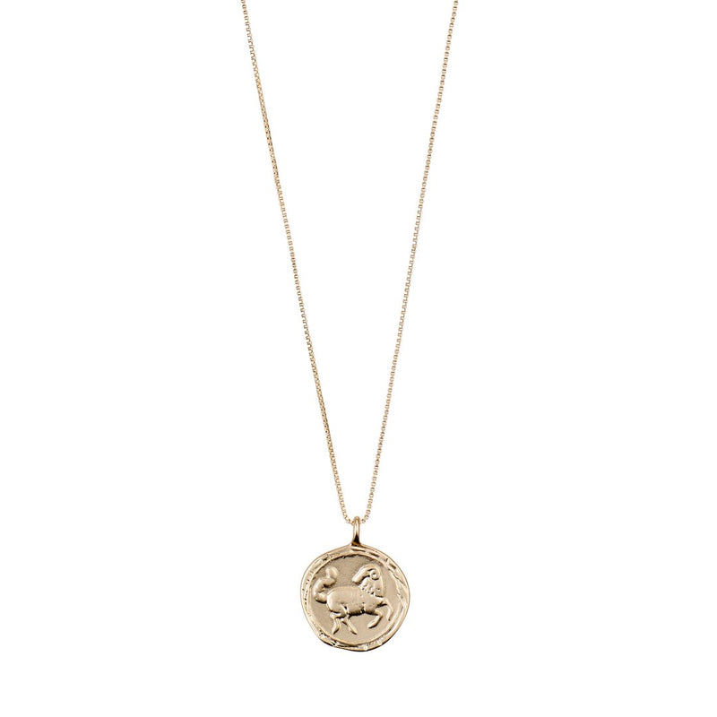 Star Sign Necklace: Aries