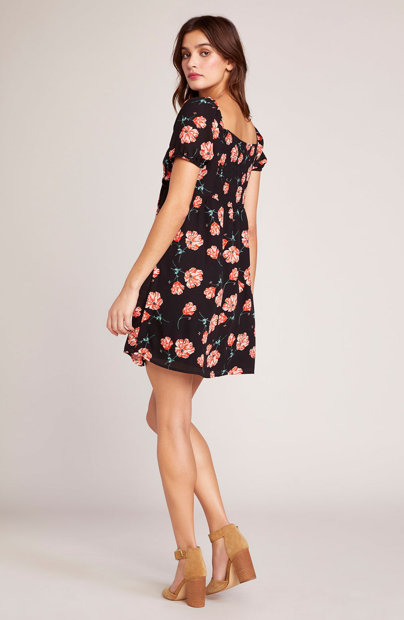 Pretty in Poppies Dress