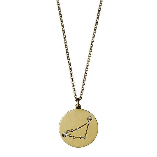 Star Sign Necklace, Capricorn