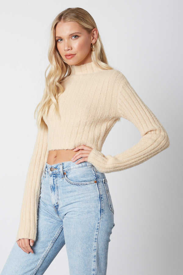 Marissa Turtle Neck Sweater