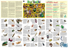 Load image into Gallery viewer, Insect Floor Puzzle and Poster