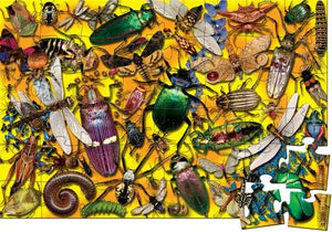 Insect Floor Puzzle and Poster