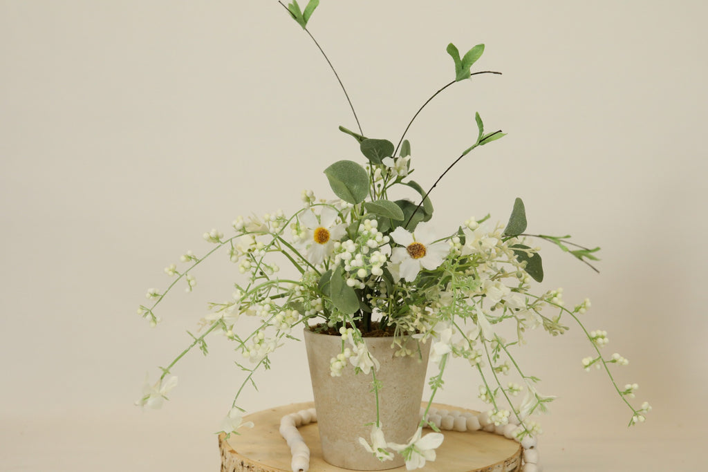 Jubilee Potted Plant - Cream