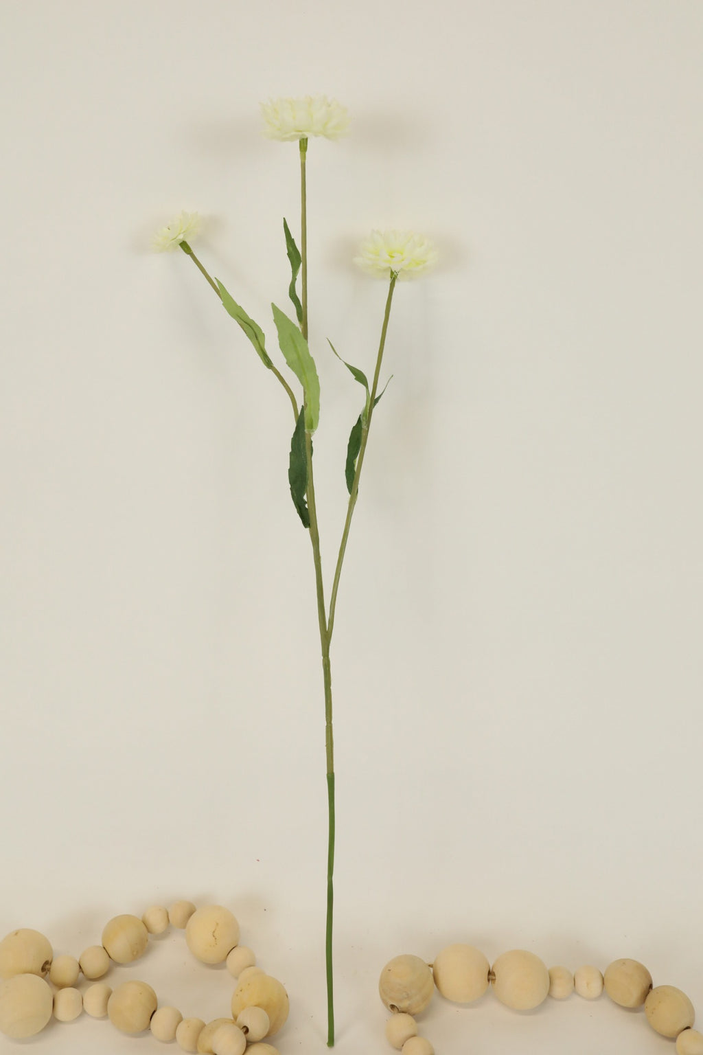 Strawflower Stem - 17""