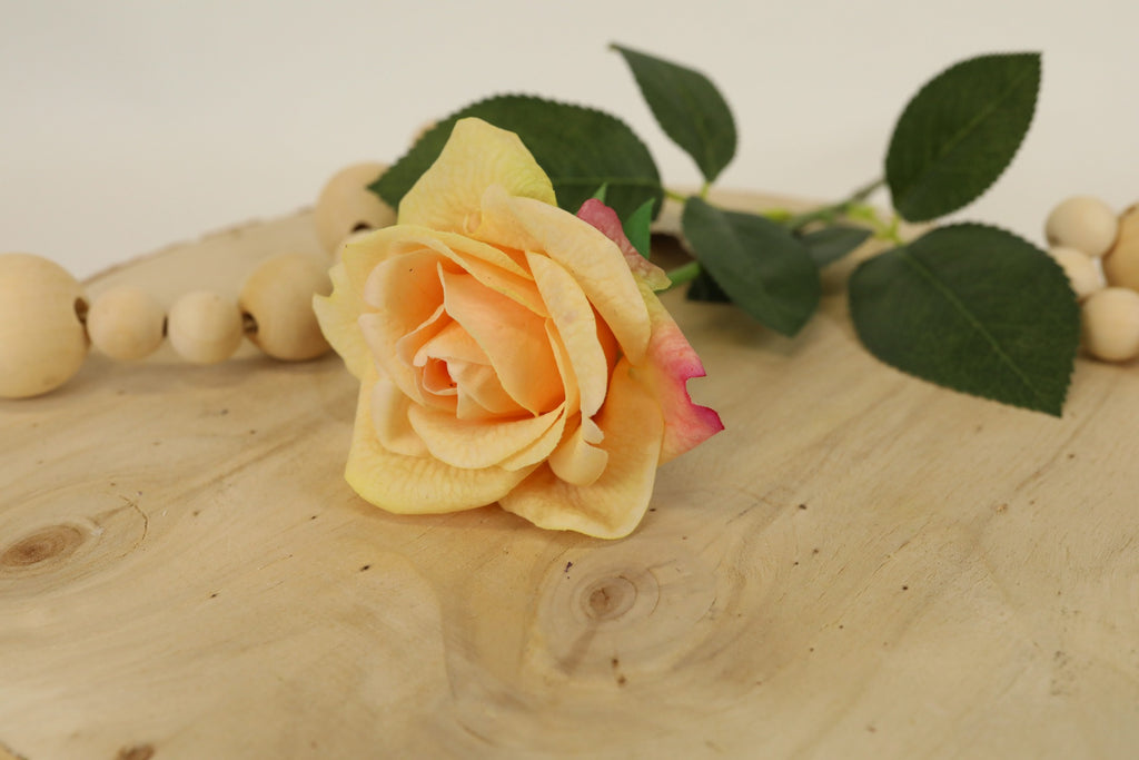 Rose Stem - Peach 17""