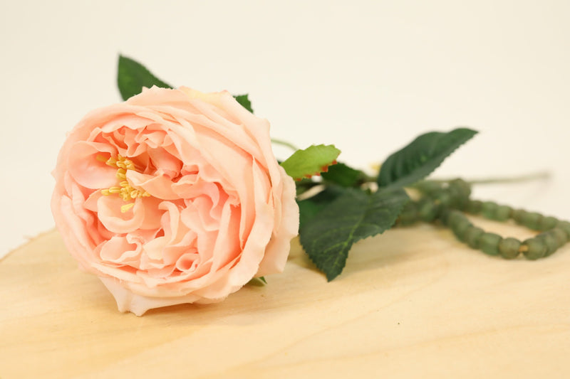 English Rose Stem - Pink