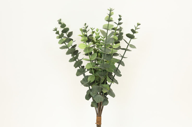 Woodglen Eucalyptus Bundle