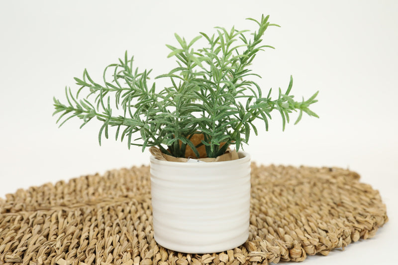 Ribbed Ceramic Pot - Small