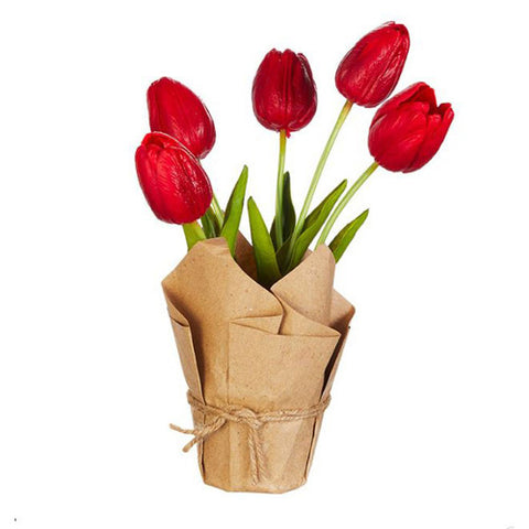 Mini Single Stem Tulip - Red