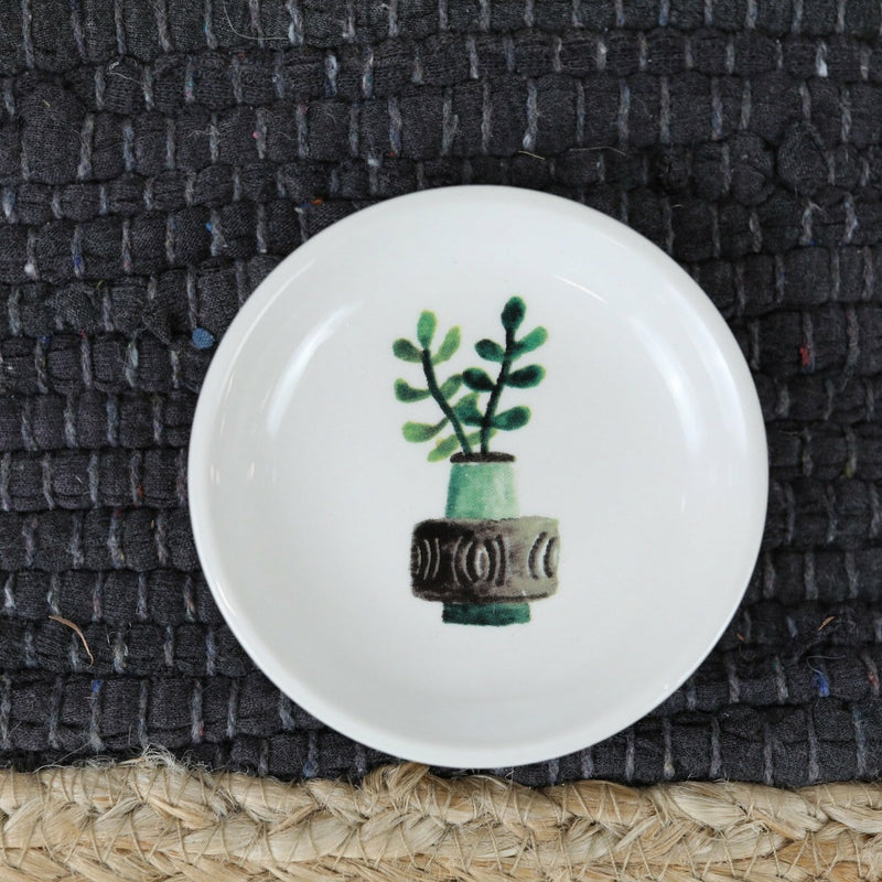 Cactus Trinket Dishes - 4 Styles