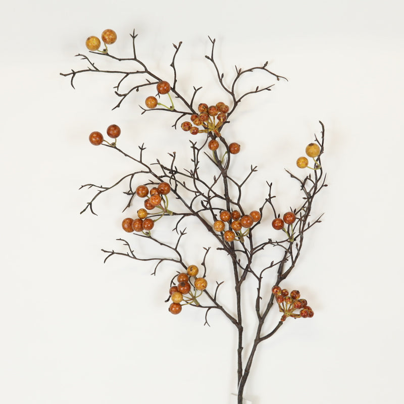 Brown Berry Stem
