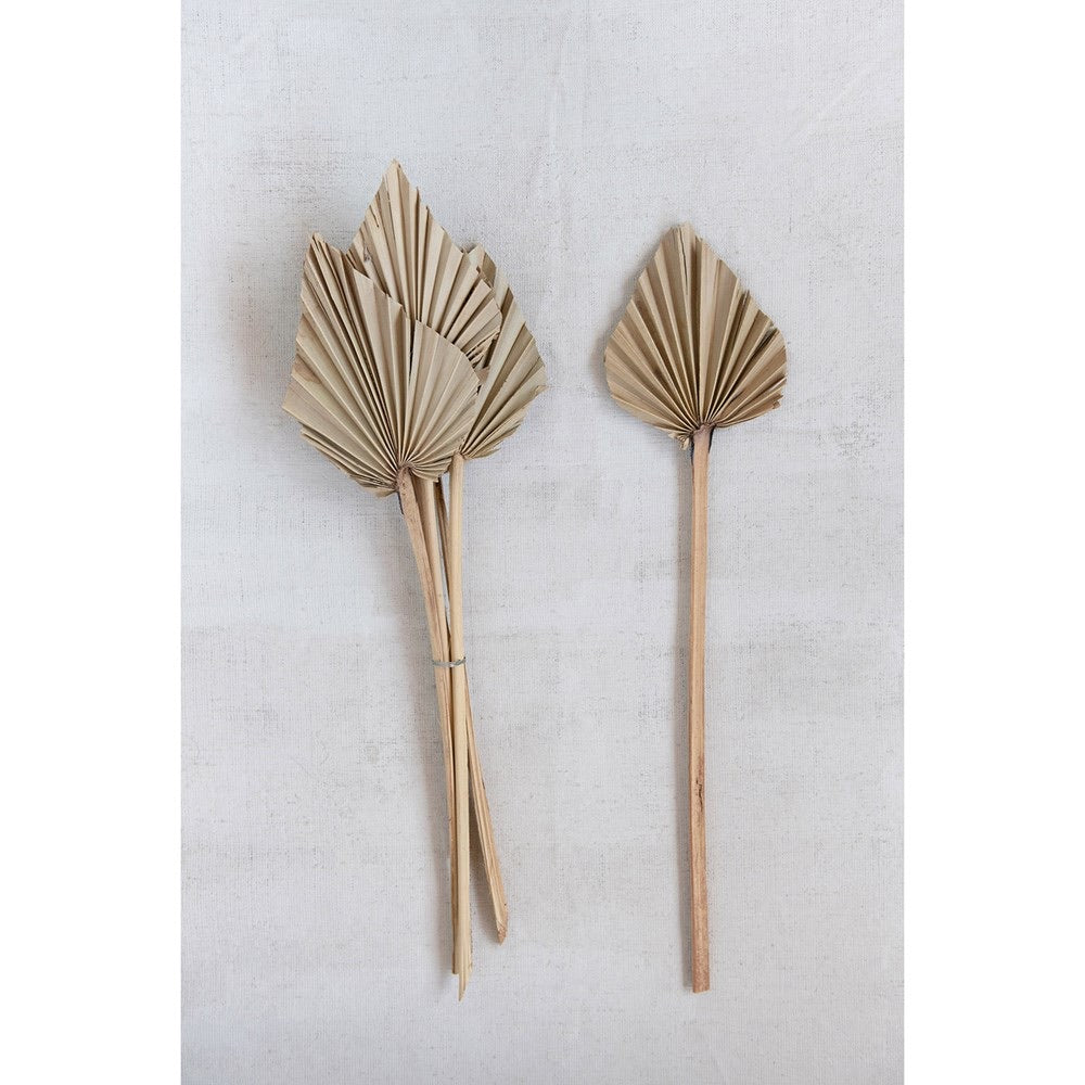 Palm Spear Stems - Set of 6