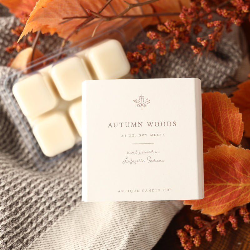 Autumn Woods - Melt