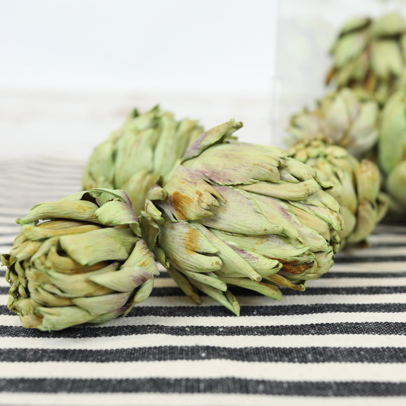 Dried Artichoke