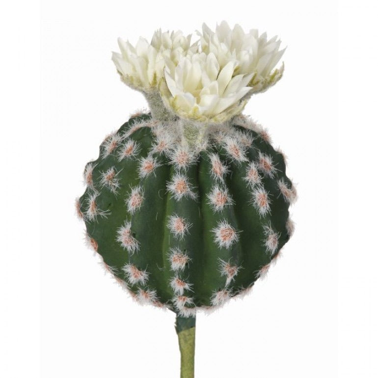 Flowering Barrel Cactus Pick