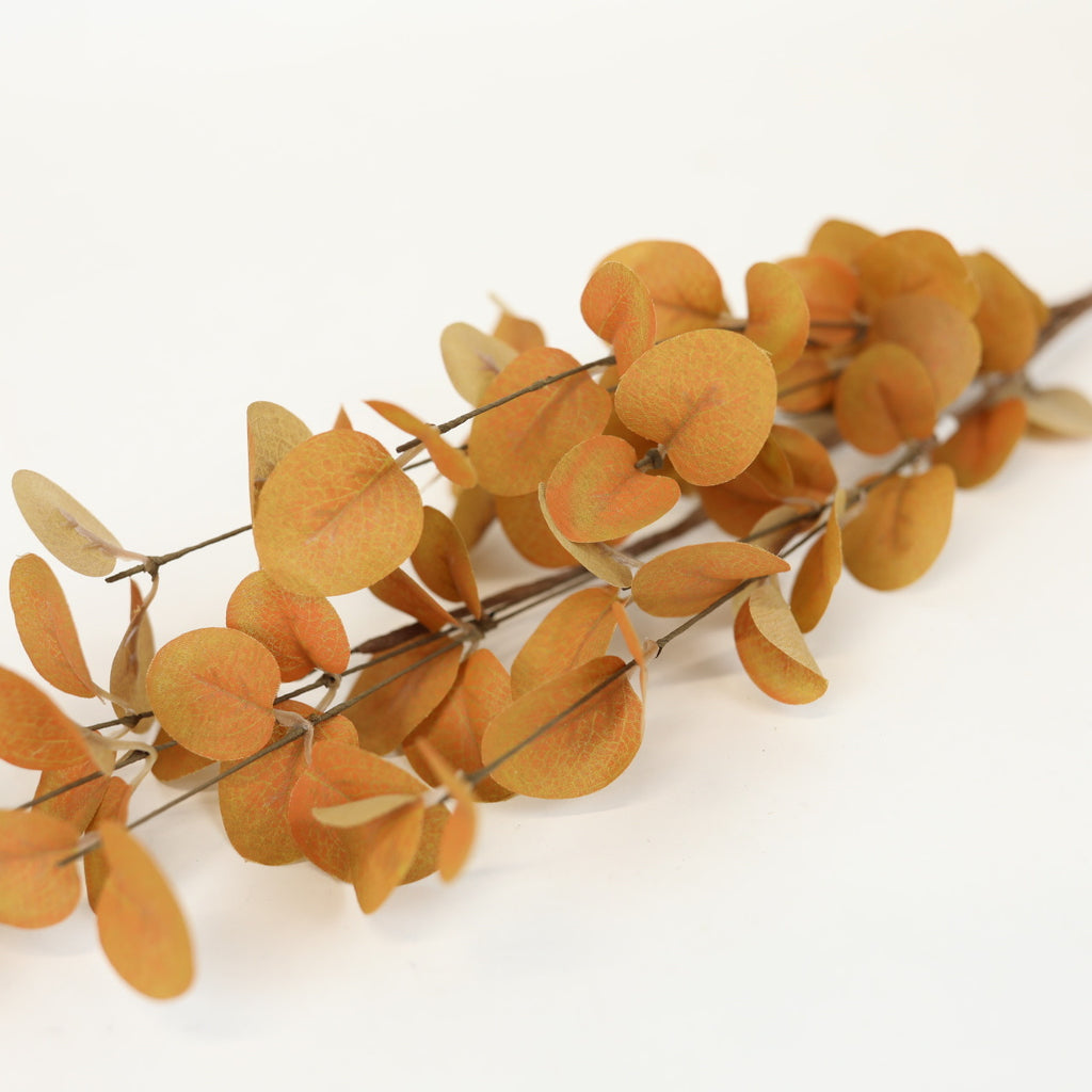 Burnt Orange Eucalyptus Stem